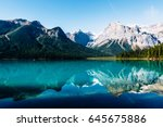 specular reflection of... | Shutterstock . vector #645675886
