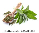 sage leaves fresh and dry | Shutterstock . vector #645708403