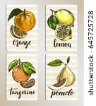 set of cards with citrus fruits.... | Shutterstock .eps vector #645725728