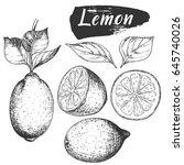 sketch ink vintage lemon set... | Shutterstock .eps vector #645740026