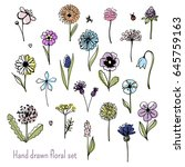 hand drawn floral set. graphic... | Shutterstock .eps vector #645759163