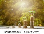 money growing plant step with... | Shutterstock . vector #645759994