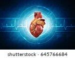 3d anatomy of human heart   | Shutterstock . vector #645766684