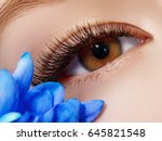 beautiful macro shot of female... | Shutterstock . vector #645821548