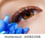 beautiful macro shot of female... | Shutterstock . vector #645821548