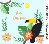 vector tropical elements on... | Shutterstock .eps vector #645837838