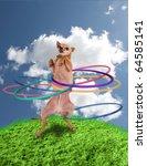 a chihuahua using a hula hoop - stock photo