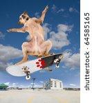 a chihuahua on a cool skateboard - stock photo