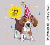 festive poster. puppy beagle in ... | Shutterstock .eps vector #645907624