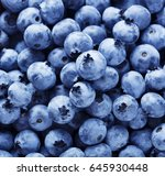 closeup of blueberries | Shutterstock . vector #645930448