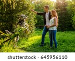 Stock photo a young couple walking a dog in the spring park 645956110