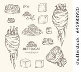collection of beet sugar  sugar ... | Shutterstock .eps vector #645983920