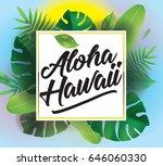 aloha hawaii. vector background ... | Shutterstock .eps vector #646060330