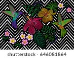 hummingbird around flower... | Shutterstock .eps vector #646081864