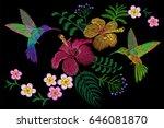 hummingbird around flower...   Shutterstock .eps vector #646081870