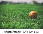 Basketball And Green Grass