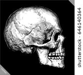 engrave human skull hand drawn... | Shutterstock .eps vector #646140364