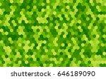 light green vector pattern....   Shutterstock .eps vector #646189090