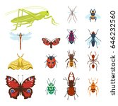 colorful insects icons isolated ... | Shutterstock .eps vector #646232560