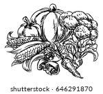 a vegetables vegetarian food...   Shutterstock .eps vector #646291870