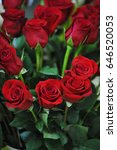 Stock photo red roses close up background 646520053