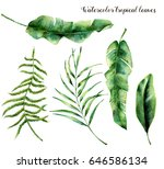 watercolor set with tropical... | Shutterstock . vector #646586134