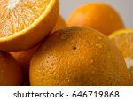 orange  half of orange  orange...   Shutterstock . vector #646719868
