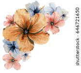hand drawn watercolor floral... | Shutterstock . vector #646721650