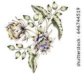 watercolor flower illustration | Shutterstock . vector #646744519