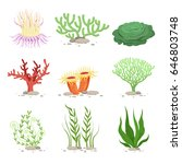 vector set of underwater plants....   Shutterstock .eps vector #646803748