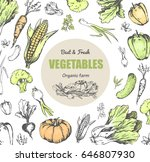 best and fresh vegetables from... | Shutterstock .eps vector #646807930