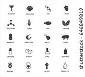 allergen icons set. black and... | Shutterstock .eps vector #646849819