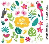 set of tropical elements....   Shutterstock .eps vector #646858063