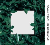 square frame  creative layout... | Shutterstock . vector #646879903