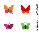 flat moth set of archippus ... | Shutterstock .eps vector #646901410