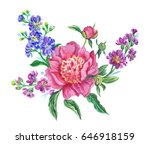 a bouquet with a pink peony and ...   Shutterstock . vector #646918159