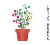 flower plant in flower pot.... | Shutterstock .eps vector #647024044