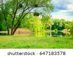 beautiful natural background by ... | Shutterstock . vector #647183578