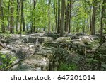 the slaughter pen at stone... | Shutterstock . vector #647201014