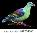 Green Dove Realistic On Black...