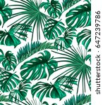 vector tropical palm leaves... | Shutterstock .eps vector #647239786