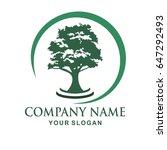 tree logo design | Shutterstock .eps vector #647292493