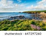 summer at trevone bay near... | Shutterstock . vector #647297260