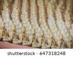 buddhas | Shutterstock . vector #647318248