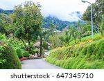 flower garden royal project ... | Shutterstock . vector #647345710