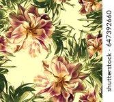 peonies seamless pattern.... | Shutterstock . vector #647392660