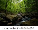 stream in green forest | Shutterstock . vector #647454250