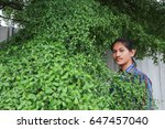 Small photo of A man with a Long hair and a mustache peeking out from the bushes of Terminalia ivorensis Chev bedew