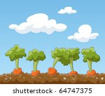 cartoon garden bed with carrots ... | Shutterstock .eps vector #64747375