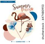 tropical  background. summer... | Shutterstock .eps vector #647480953